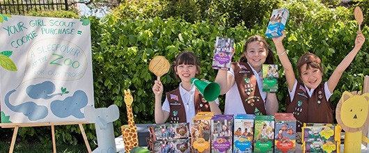 Girl Scouts selling cookies